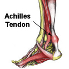 achilles tendon, achilles heel, sports injury
